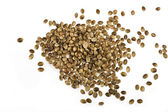 Hemp seed — Stock Photo