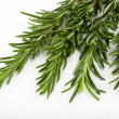 Foto Stock: Fresh rosemary