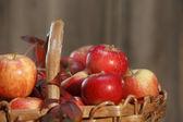 Applebasket närbild med blad — Stockfoto