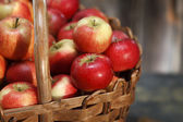 Applebasket closeup — Stock Photo