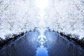 Kış ayna — Stok fotoğraf