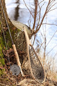 Fly fishing rod and net — Stock Photo