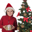 Beautiful child with Christmas trees and gift — Stock Photo