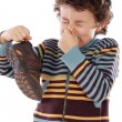 Boy with stinky - Stock Photo