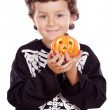 Boy in halloween - Stock Photo