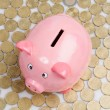 Pink piggy-bank — Stock Photo