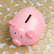 Pink piggy-bank — Stock Photo #9438281