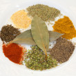 Stock Photo: White dish with many spices