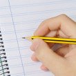 Pencil and notebook — Stock Photo #9438945