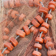 Traditional fishing net - Stock Photo