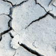 Cracks in the land of a river - Stock Photo