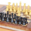 Chess game with all pieces on the board — Stock Photo #9439500