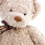 Brown teddy bear — Stock Photo