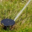 Sprinkler watering — Stock Photo
