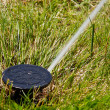 Sprinkler watering — Stock Photo #9439822