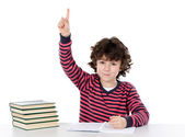 Boy studying a over white background — Stock Photo