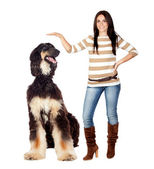 Beautiful brunette girl with a big dog — Stock Photo