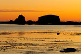 Nice picture of a sunset low tide Nice picture of a sunset low — Stock Photo