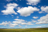Landscape with a beautiful sky — Stock Photo