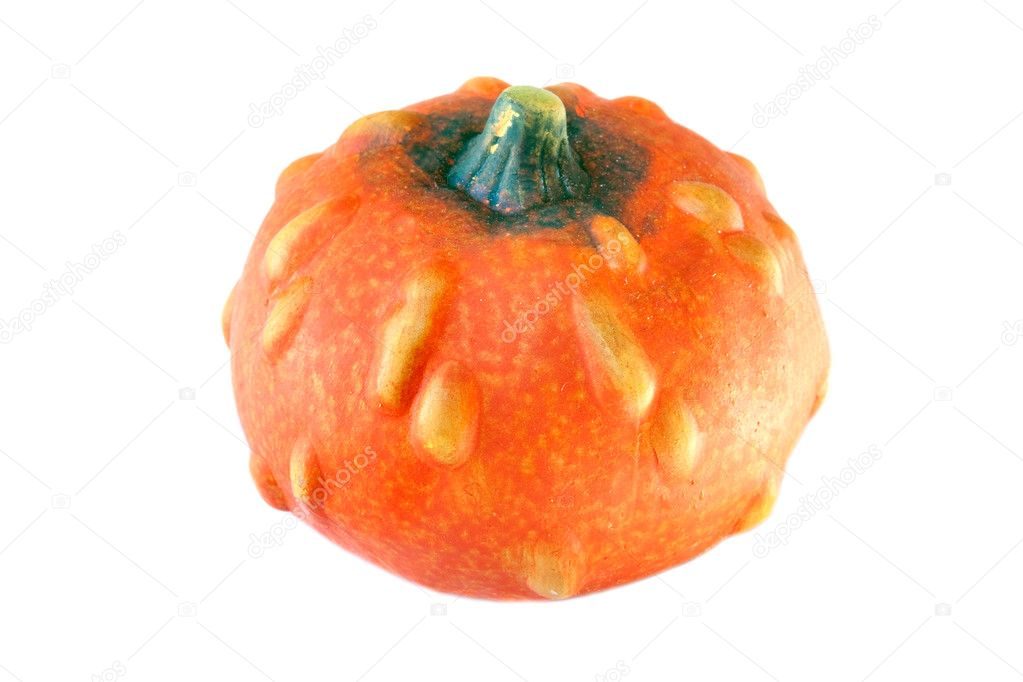 Orange pumpkin isolated on a white background — Stock Photo #9438493