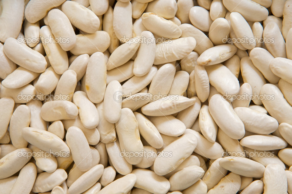 Photo of many white beans for use as background  Stock Photo #9438846