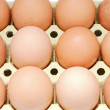 Twelve eggs brown chicken in a box twelve eggs brown chicken in — Stock Photo #9440415