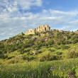 Beautiful landscape with a castle on a hill — Stock Photo