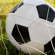 Soccer ball in the goal net — Stock Photo