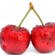 Two cherries — Stock Photo