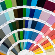 Fan of colors - Stock Photo