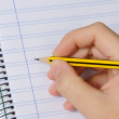 Pencil and notebook — Stockfoto