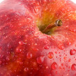 Macro apple with red drops of water - Shallow DOF - Stock Photo