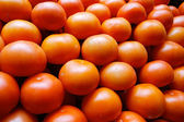 Piling up of tomatoes — Stock Photo