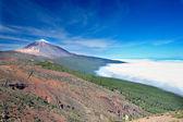Nice photo of Teide — Stock Photo