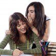 Girls friends whispering while studying — Stock Photo