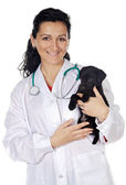 Attractive lady veterinarian — Stock Photo