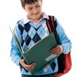 Back to school. Beautiful student boy — Foto de Stock