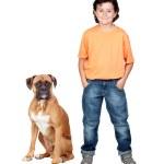 Adorable boy and his dog — Stock Photo