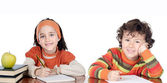 Two brothers students — Stock Photo