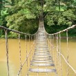 Hanging Bridge to Tree — Stock Photo #10660199
