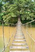 Hanging Bridge to the Tree — ストック写真