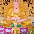 Sitting Buddha - Stockfoto