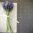Stock Photo: Spring violet flowers with bow