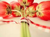 Stilisierte grußkarte mit rote tulpen — Stockfoto