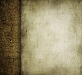 Grunge floral background with space for text or image — Stock Photo