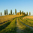 Typical tuscan landscape — Stock Photo