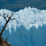Perito Moreno Glacier, Patagonia, Argentina — Stock Photo #9333180