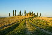 Typiska toskanska landskapet — Stockfoto