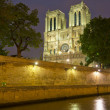 Notre Dame de Paris at night — 图库照片