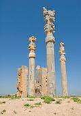 Columns of ancient city of Persepolis — Stock Photo